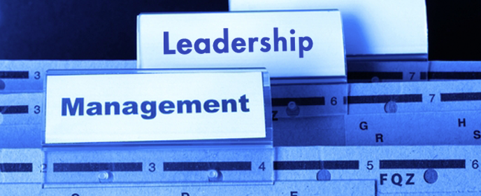 Finding a Balance: What Managers and Leaders Do at JDI